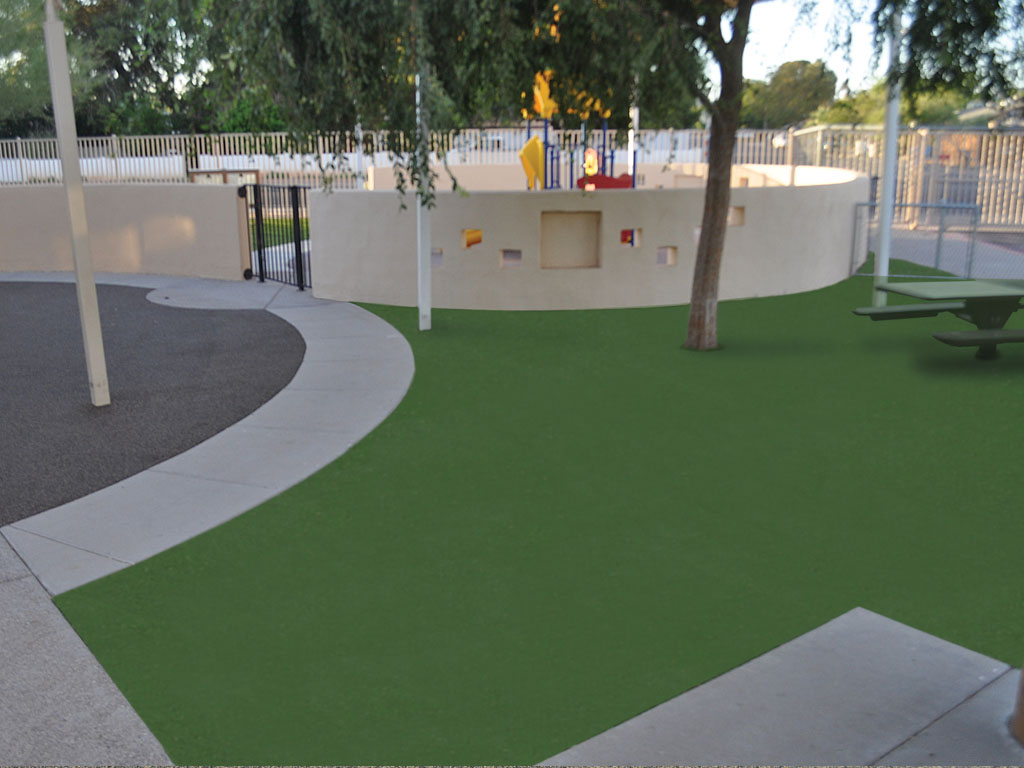 Ameri-Grass and Rubber Surfacing play area.